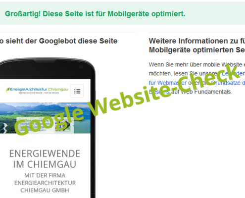 Screenshot Google Check responsive Website